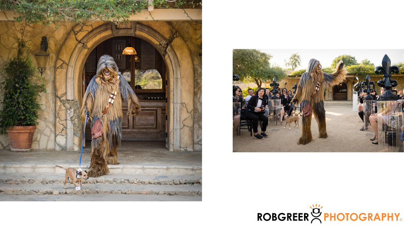 Chewbacca Walks Family Dog During Wedding Processional