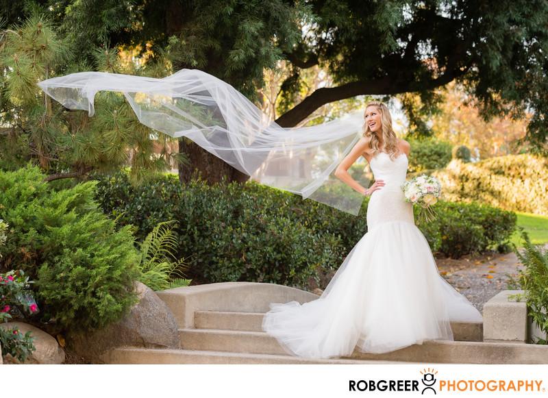 Blowing Bridal Veil at Ambassador Mansions and Gardens