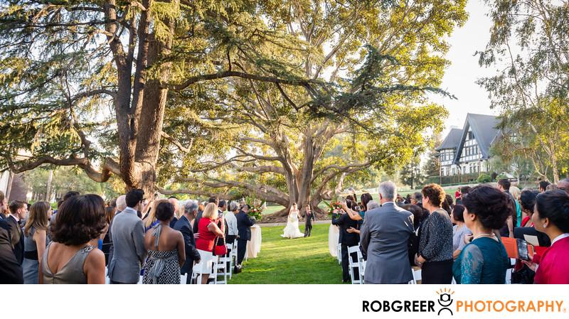 Huge Tree Wedding Processional