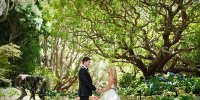 Katie & James - The Wedding Album