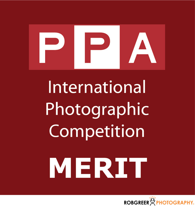 PPA International Photographic Competition Merit Award​