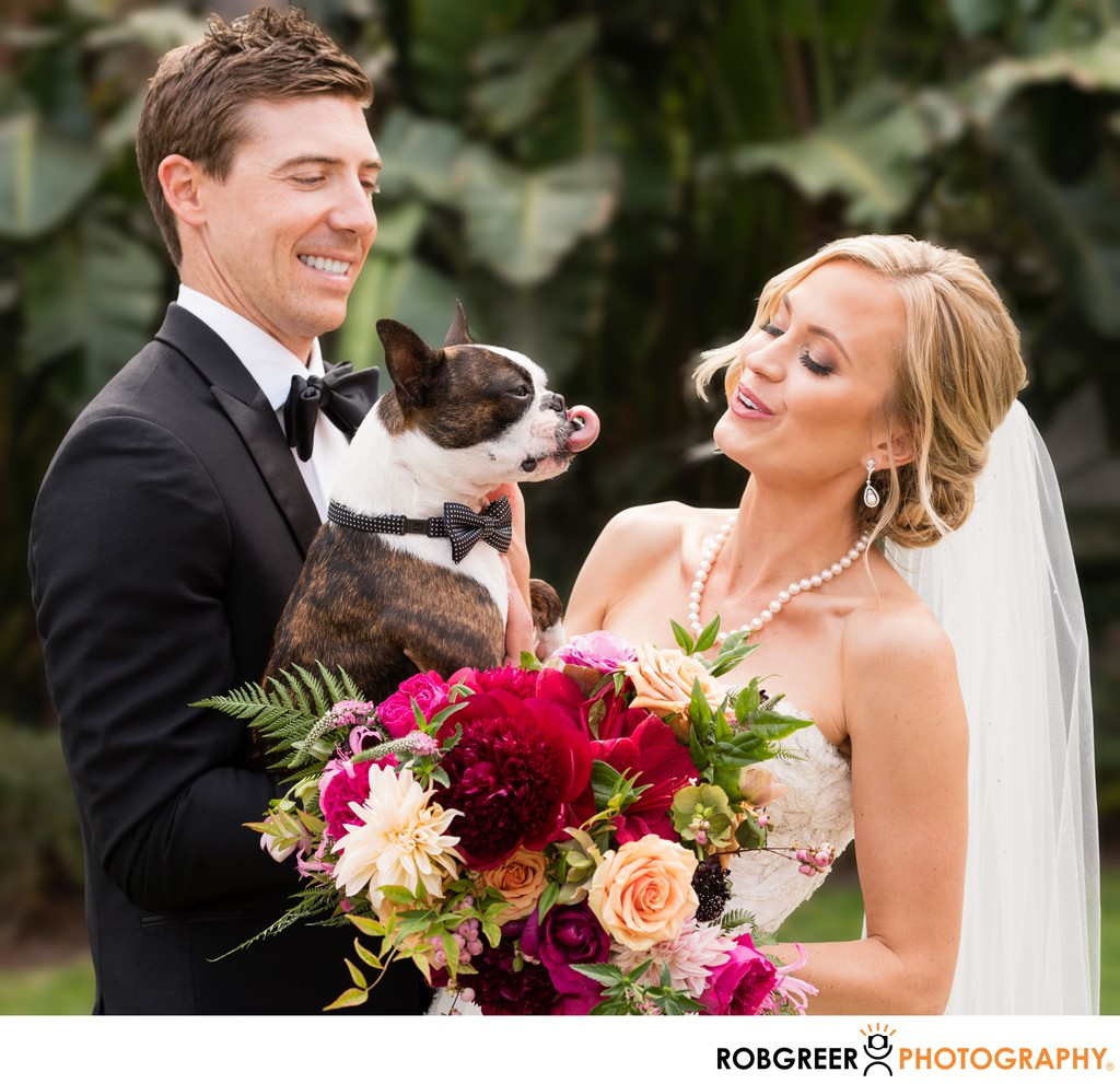 Bride & Groom: Puppy Love