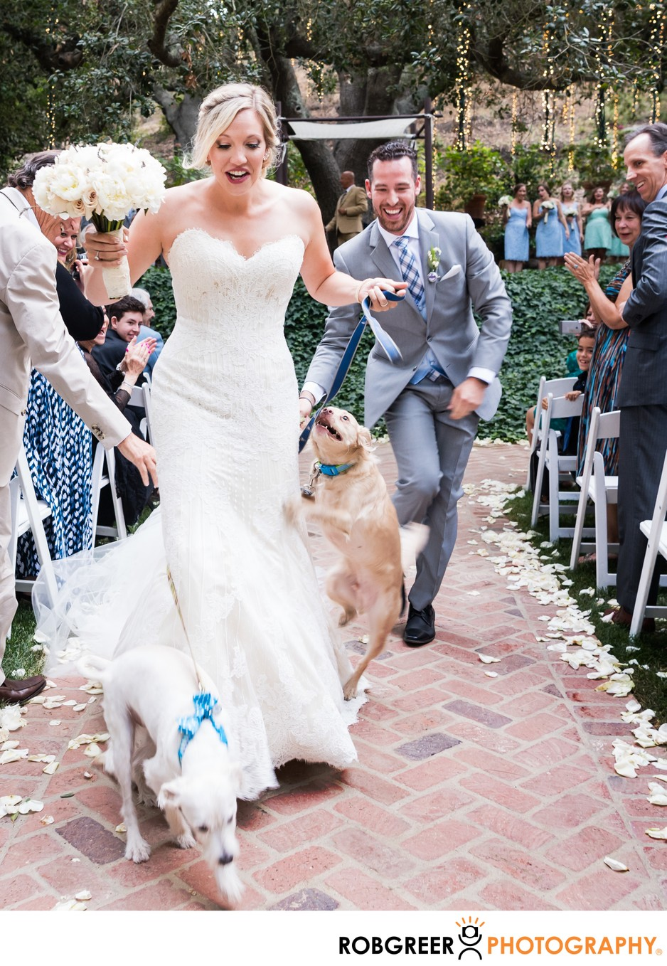 Wedding Ceremony Recessional: Pets