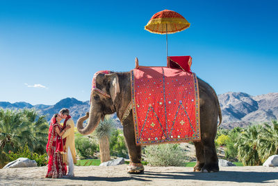 Bighorn Country Club Indian Wedding with Elephant